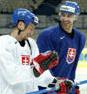 slovensky-hokej-3